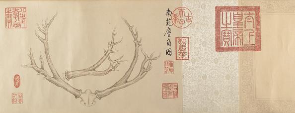 Animal Body Part「Two Paintings Of Deer Antlers」:写真・画像(13)[壁紙.com]