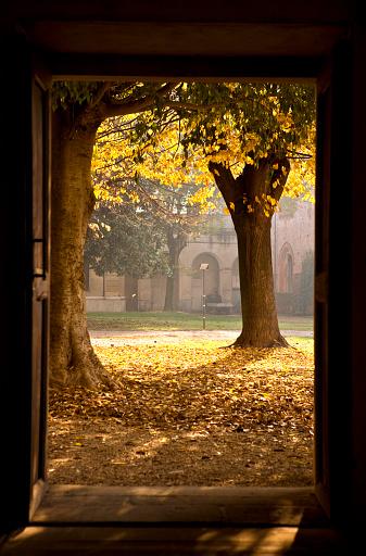 秋「ドアを開きます。カラー画像」:スマホ壁紙(2)