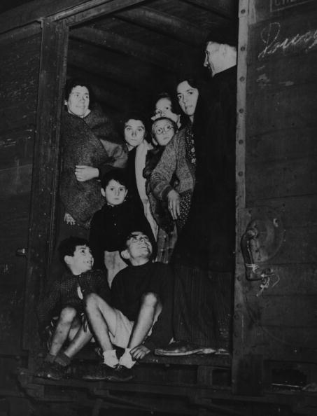 スペイン文化「Spanish Refugees」:写真・画像(18)[壁紙.com]