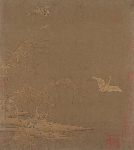 Copy Space「Wild Geese In Winter」:写真・画像(3)[壁紙.com]