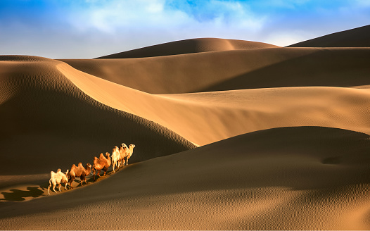 Awbari Sand Sea「Desert,Xinjiang,China」:スマホ壁紙(9)