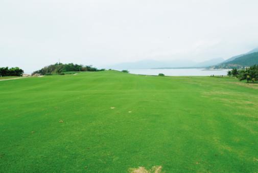 Sand Trap「Coastal golf course」:スマホ壁紙(7)
