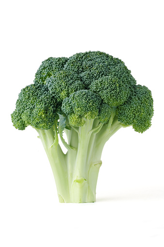 Broccoli「Single piece of broccoli on a white background」:スマホ壁紙(8)