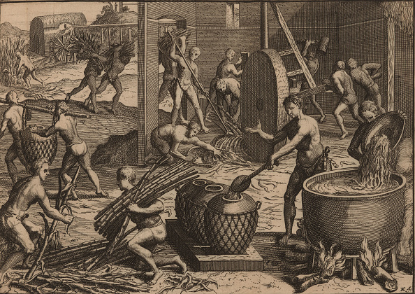 Sugar Cane「Slaves Process Sugar Cane And Make Sugar  Creator: Aa」:写真・画像(4)[壁紙.com]