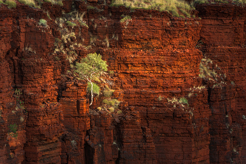 Durability「Karijini National Park, Western Australia, Australia」:スマホ壁紙(2)