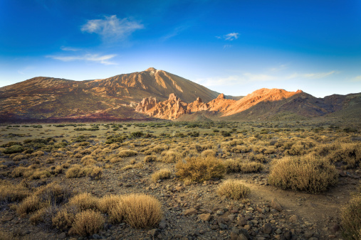 Atlantic Islands「Wild Valley in El Teide National Park, Canary Islands」:スマホ壁紙(14)