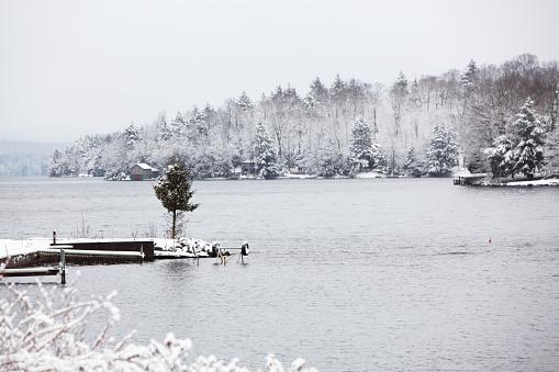 アディロンダック森林保護区「常緑樹の極寒の冬の Adirondack 湖」:スマホ壁紙(8)
