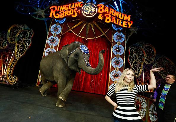 "AnnaSophia Robb「Ringling Bros. and Barnum & Bailey Presents ""Legends"" - Inside Access, VIP Show And Party」:写真・画像(10)[壁紙.com]"