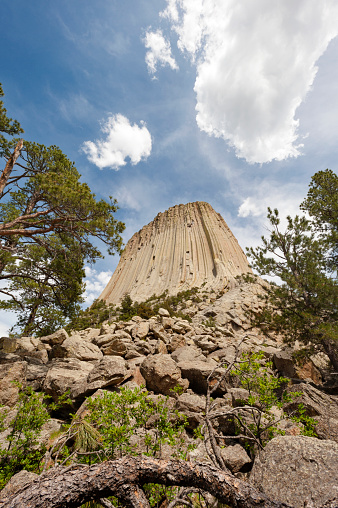 Basalt「Devil's Tower National Monument, 5112 ft.」:スマホ壁紙(17)