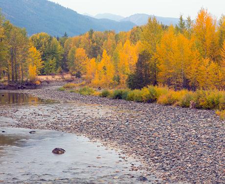 オカナガン国定森林「Methow River in Methow Valley in autumn, Okanogan National Forest, Washington State, USA」:スマホ壁紙(0)
