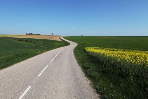 Brassica rapa「road in spring」:スマホ壁紙(19)