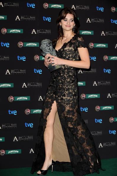 授賞式「Goya Cinema Awards 2009」:写真・画像(18)[壁紙.com]
