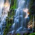 Willamette National Forest壁紙の画像(壁紙.com)