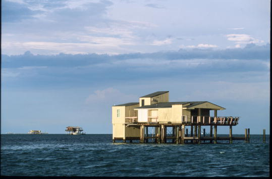 Ecosystem「Environmentalists Threaten Removal Of Stilthouses」:写真・画像(2)[壁紙.com]