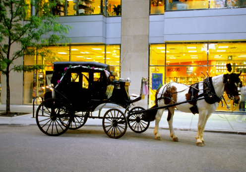Horse「A horse-drawn carriage outside a store in Chicago, Illinois, USA」:スマホ壁紙(12)