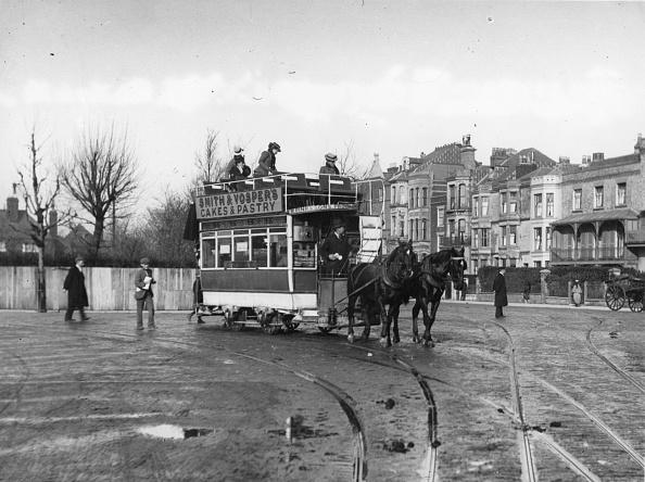 Working Animal「Horse-Drawn Tram」:写真・画像(15)[壁紙.com]