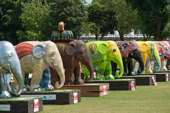Environmental Conservation「Elephant Parade」:写真・画像(19)[壁紙.com]