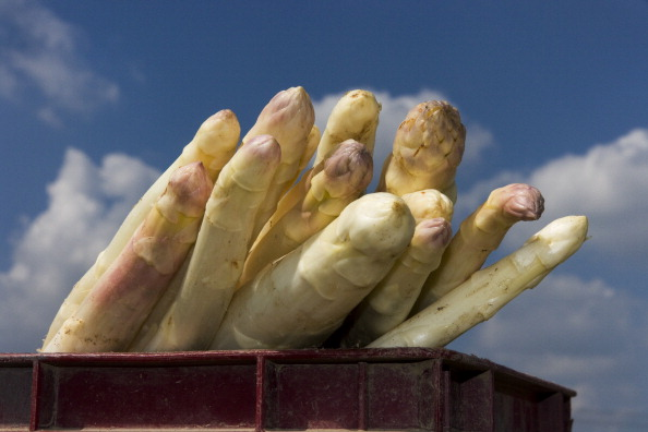 Asparagus「Bruschal, Germany」:写真・画像(11)[壁紙.com]