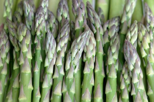 Asparagus「Asparagus」:スマホ壁紙(11)