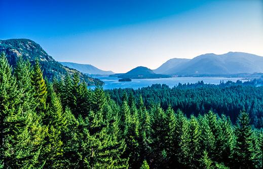 Lush Foliage「Sproat Lake, Vancouver Island, British Columbia, Canada」:スマホ壁紙(7)