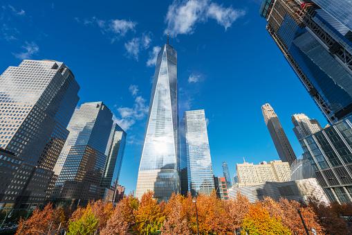 季節「One World Trade Center and other Lower Manhattan skyscrapers behind Autumn color trees at 9/11 Memorial New York.」:スマホ壁紙(2)
