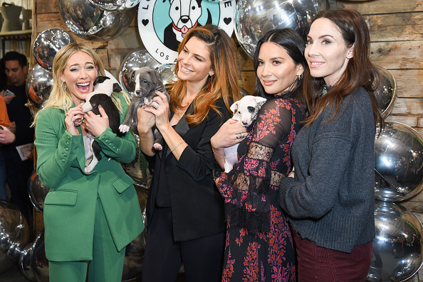 Whitney Cummings「Love Leo Rescue's 2nd Annual Cocktails For A Cause」:写真・画像(0)[壁紙.com]