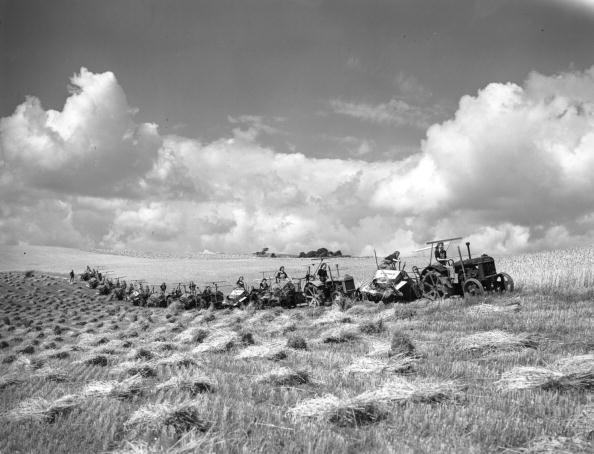 Plowed Field「Wheat Field」:写真・画像(16)[壁紙.com]