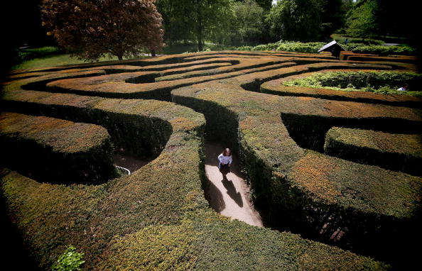Eccentric「Hampton Court Maze Welcomes Visitors During The Bank Holiday Weekend」:写真・画像(0)[壁紙.com]