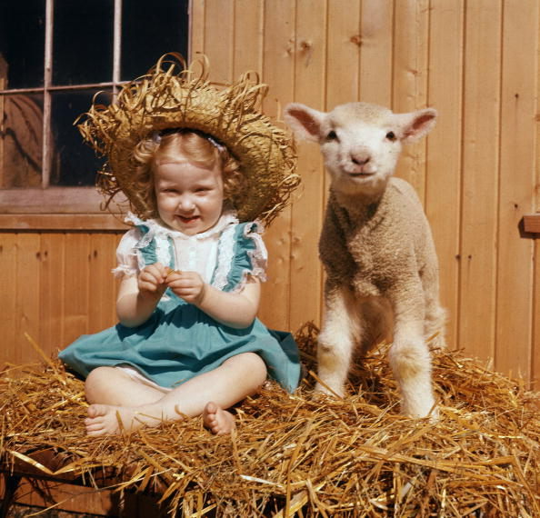 Smiling「Portrait Of Young Girl And Lamb」:写真・画像(17)[壁紙.com]