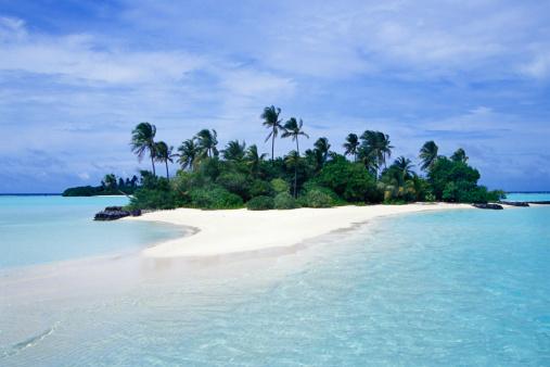 島「Small palm covered Tropical Island, Seychelles」:スマホ壁紙(5)