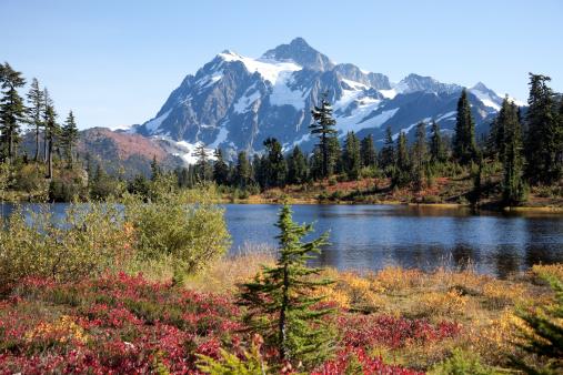 North Cascades National Park「Beauty in Nature」:スマホ壁紙(18)