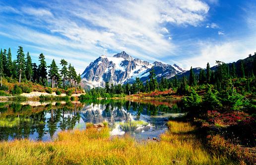 North Cascades National Park「Beauty in Nature」:スマホ壁紙(16)