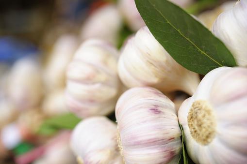 Garlic Clove「Garlic Close-Up」:スマホ壁紙(17)
