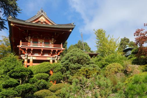 神社「日本庭園、サンフランシスコ、カリフォルニア州)」:スマホ壁紙(17)