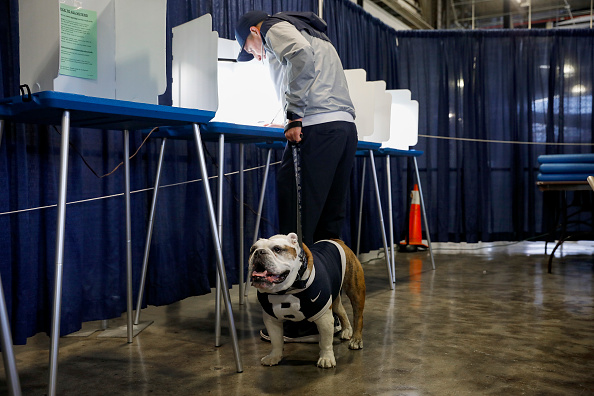 Blue「Voters Across The Country Head To The Polls For The Midterm Elections」:写真・画像(15)[壁紙.com]