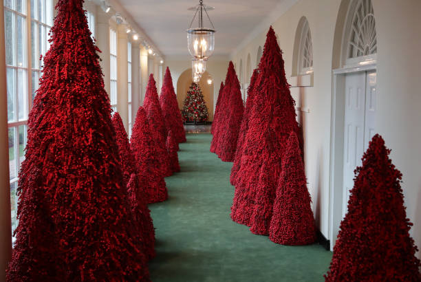 Holiday Decorations On Display At The White House:ニュース(壁紙.com)