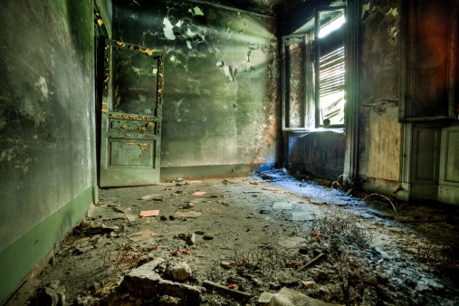 Fungal Mold「Burnt Room in Abandoned House, HDR」:スマホ壁紙(13)