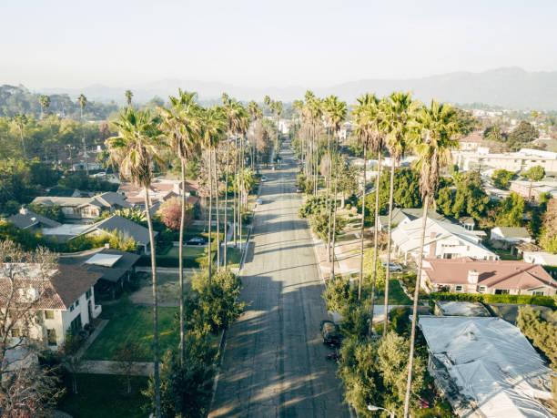 Aerial of Palm Tree Lined Street:スマホ壁紙(壁紙.com)