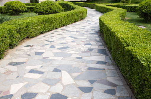 Bush「Crazy paving path winding between hedges in a Beijing park」:スマホ壁紙(3)