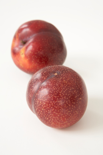 Plum「Two ripe red plums against white background」:スマホ壁紙(15)