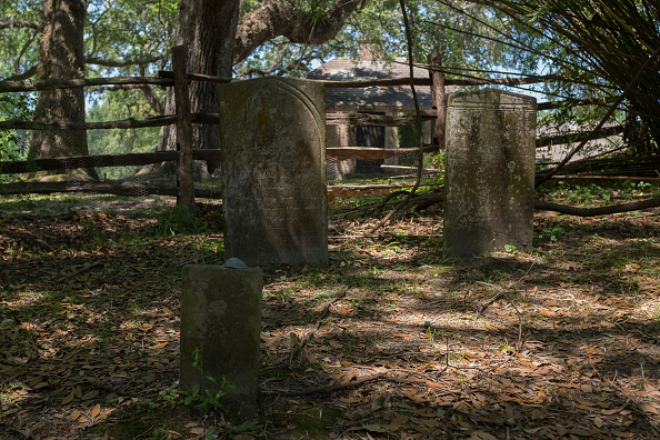 Charleston - South Carolina「Slave Cemetery」:写真・画像(11)[壁紙.com]