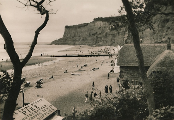 Physical Geography「Sands And Old Shanklin Head」:写真・画像(4)[壁紙.com]