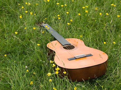 Guitar「Guitar in a field」:スマホ壁紙(10)