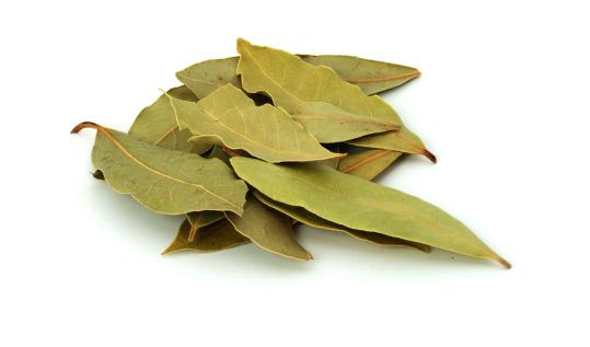Bay Leaf「Bay leaves」:スマホ壁紙(8)