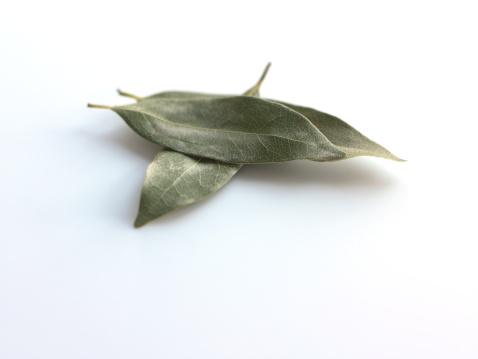 Bay Leaf「Bay leaves」:スマホ壁紙(13)