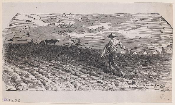 Sowing「The Sower」:写真・画像(8)[壁紙.com]