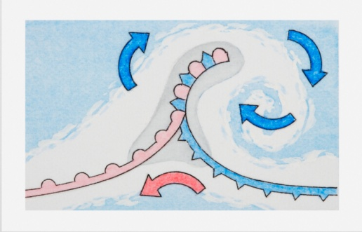 Occlusion「Illustration showing formation of weather depression where cold front may lift warm front off ground forming occluded front」:スマホ壁紙(15)