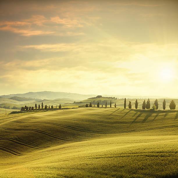 Sunset in Tuscany:スマホ壁紙(壁紙.com)