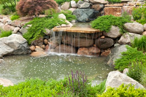 Water Garden「Backyard Waterfall」:スマホ壁紙(5)