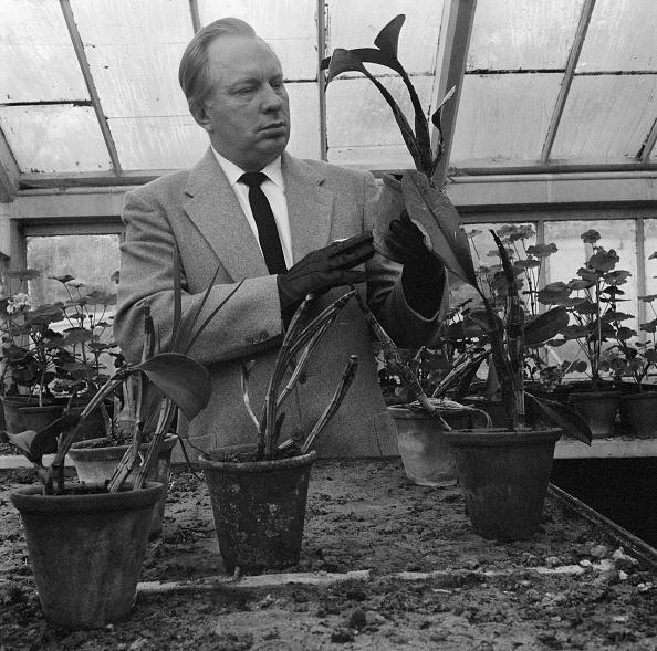 Greenhouse「L. Ron Hubbard」:写真・画像(8)[壁紙.com]